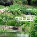 Trebah Garten Brücke im Hortensiental